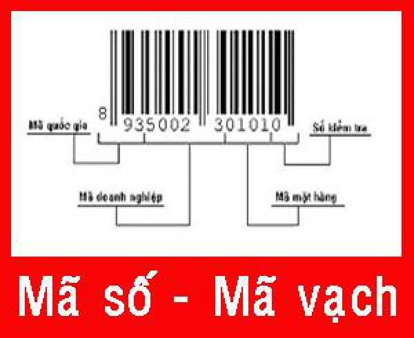 ma-so-ma-vach