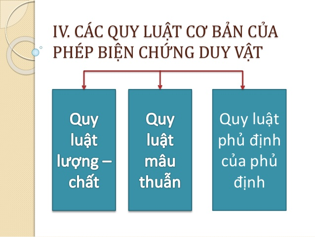 Ba Quy Luat Co Ban Cua Phep Bien Chung Duy Vat