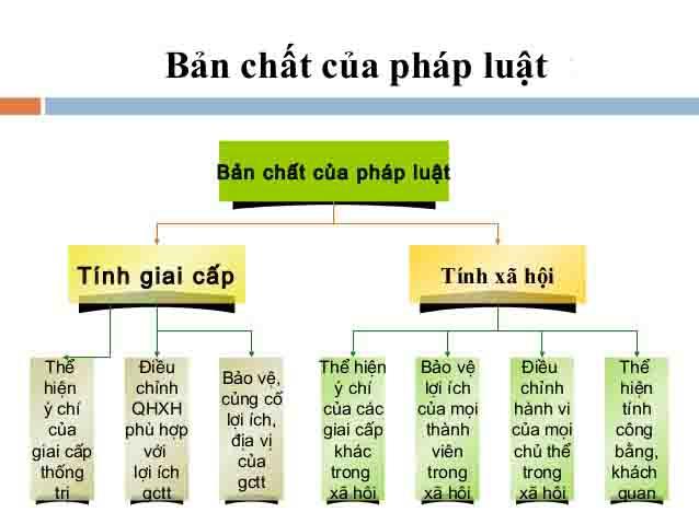 Ban Chat Cua Phap Luat La Gi