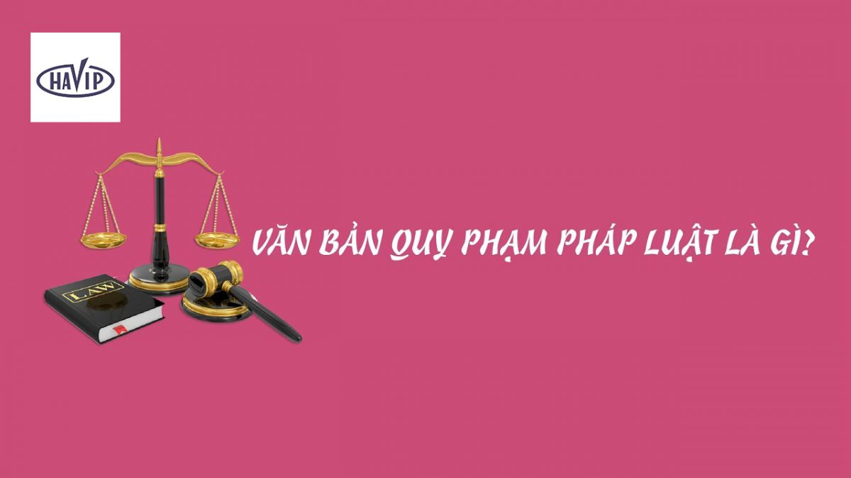 Van Ban Quy Pham Phap Luat La Gi Anh Minh Hoa