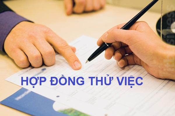 Hop Dong Thu Viec Co Duoc Dong Bao Hiem Xa Hoi