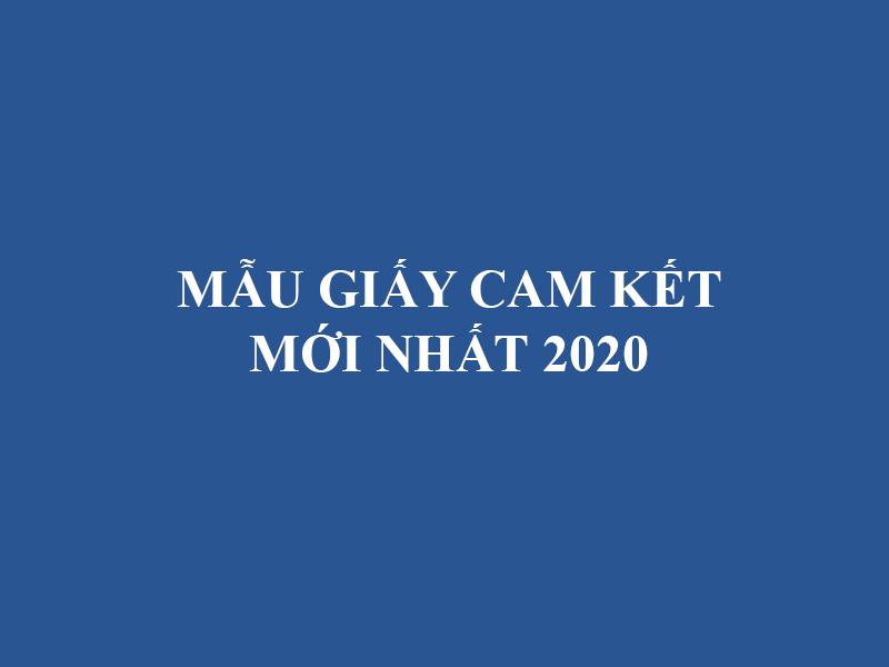 Mau Giay Cam Ket 2020 Moi Nhat