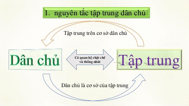 Nguyen Tac Tap Trung Dan Chu La Gi