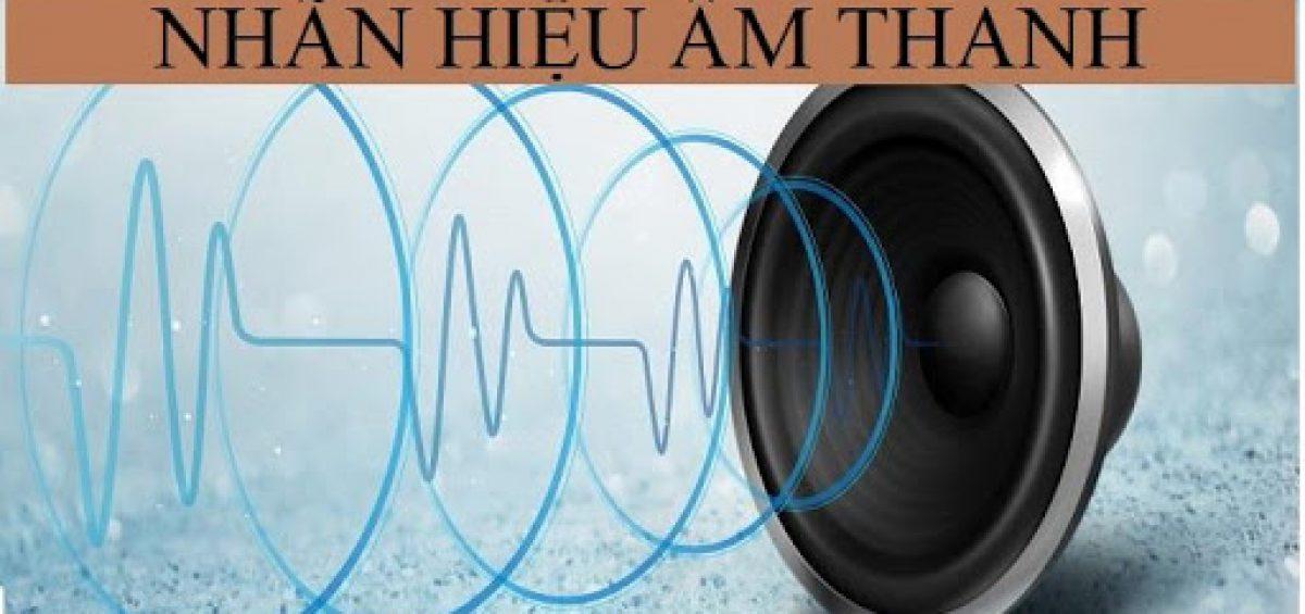 Nhan Hieu Am Thanh