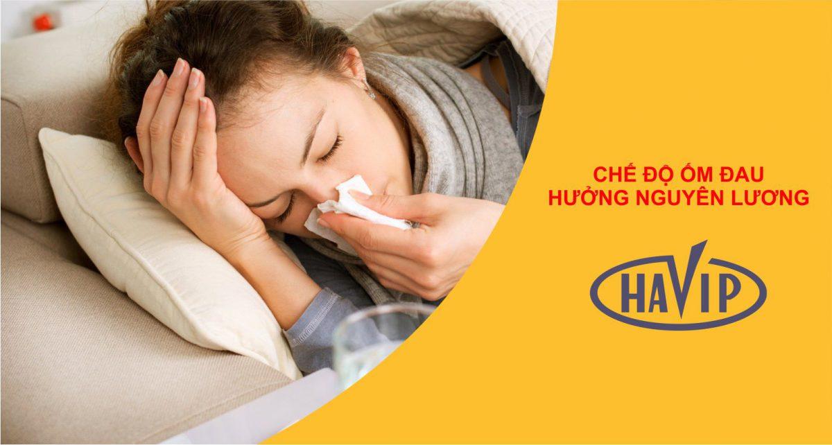 Che Do Om Dau Huong Nguyen Luong Nam 2020 Nhu The Nao