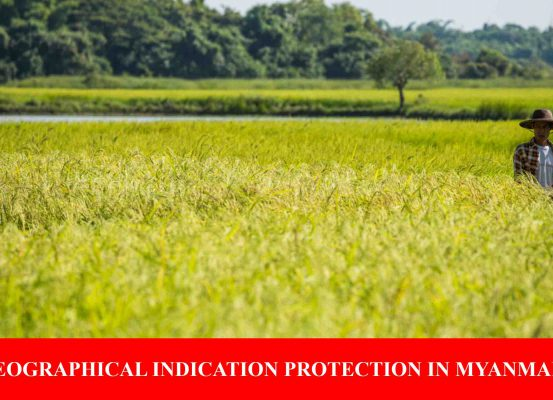 Geographical Indication Protection In Myanmar