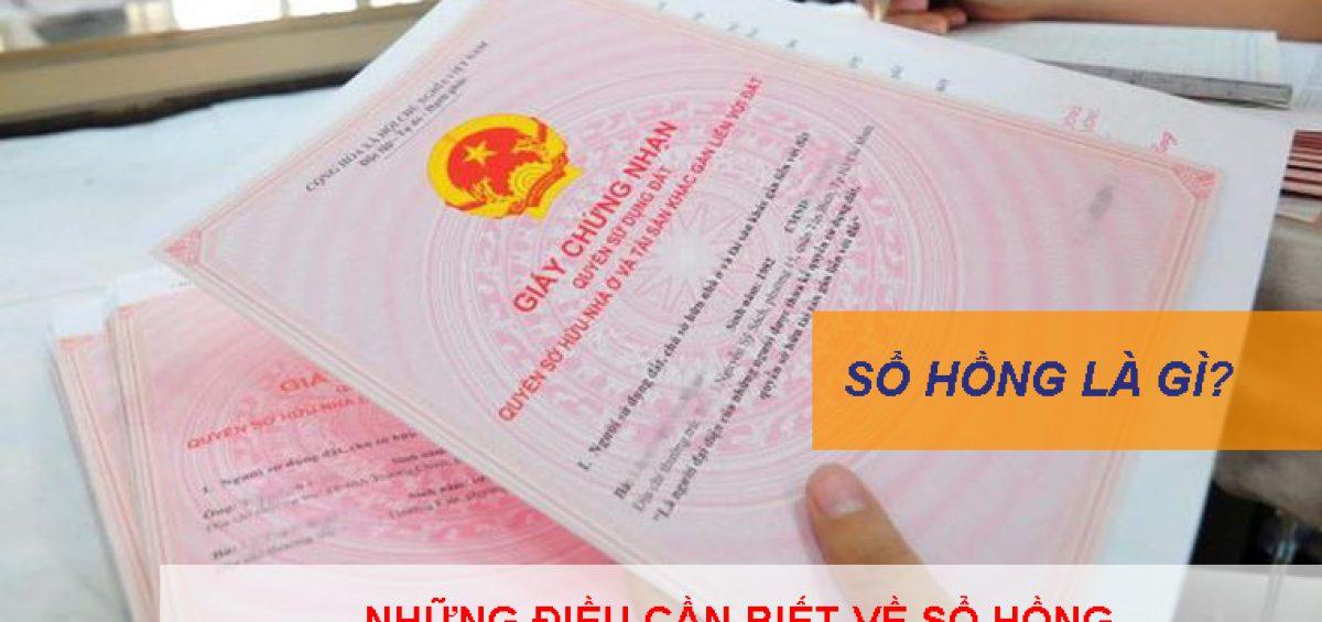 So Hong La Gi Nhung Dieu Can Biet Ve So Hong 1
